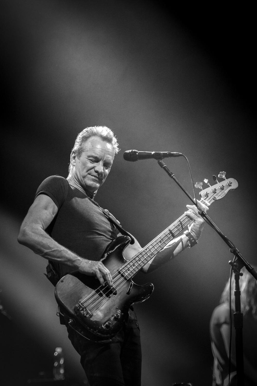 Sting zählt zu den bekanntesten Bassisten der Musikgeschichte.